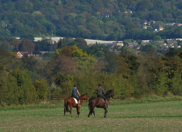 Horse-riders-in-a-field